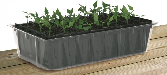 Kweektray Rapid Roots 32 cellen