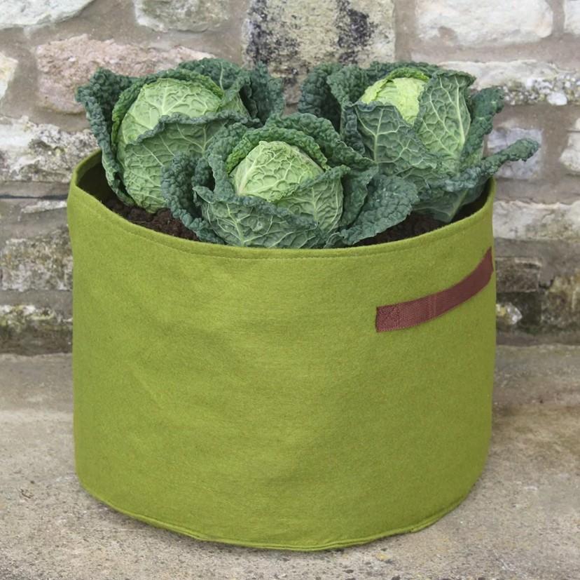 Kweekzak Vigoroot voor groenten
