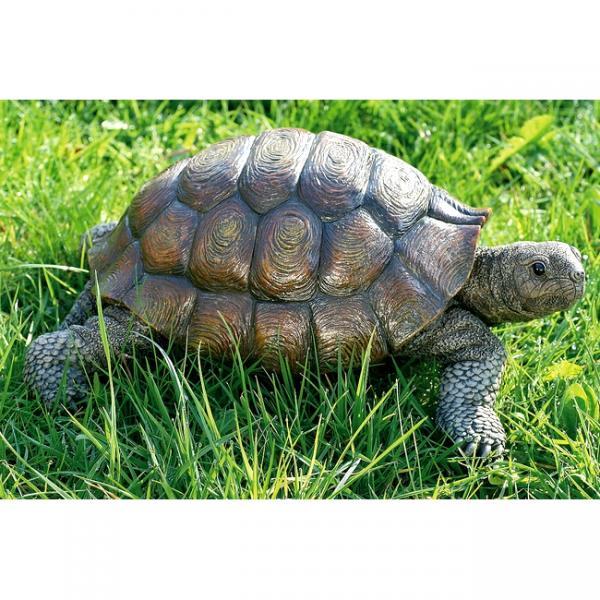 Landschildpad levensecht