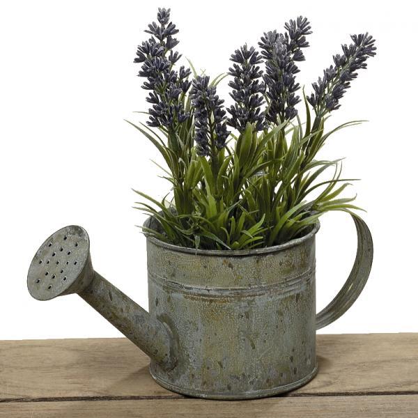 Lavendel in gieterkunststof