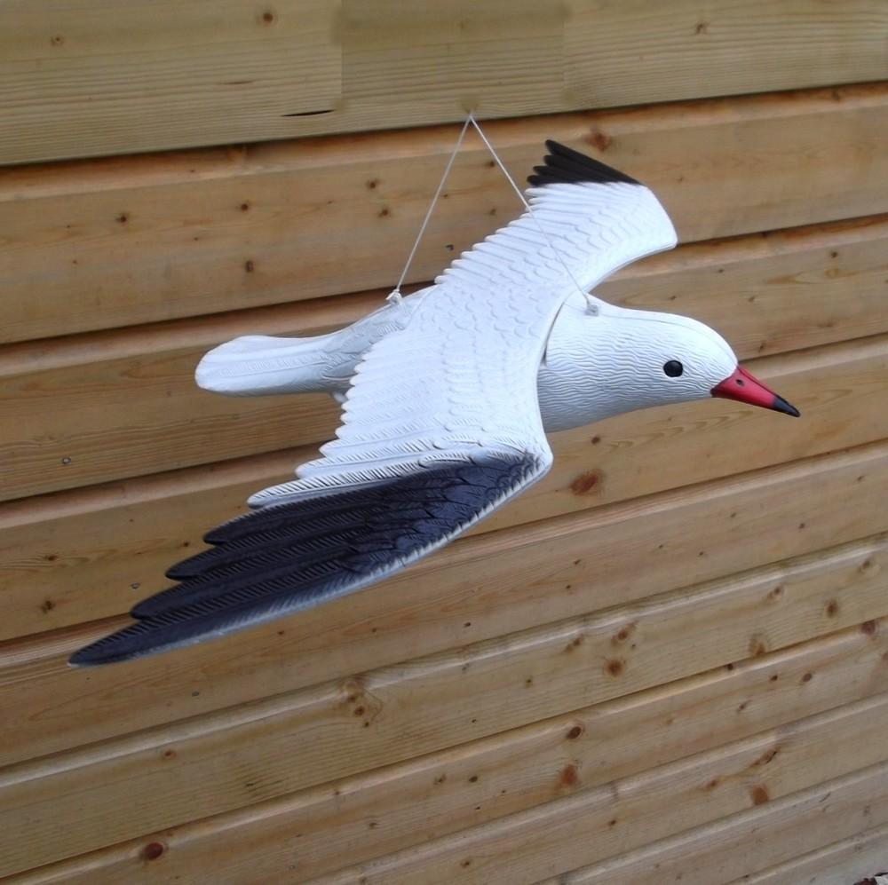 Meeuw vogelverjager