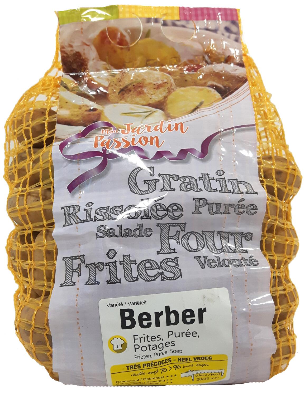 Pootgoed aardappelen Berber Hollande 15 kg