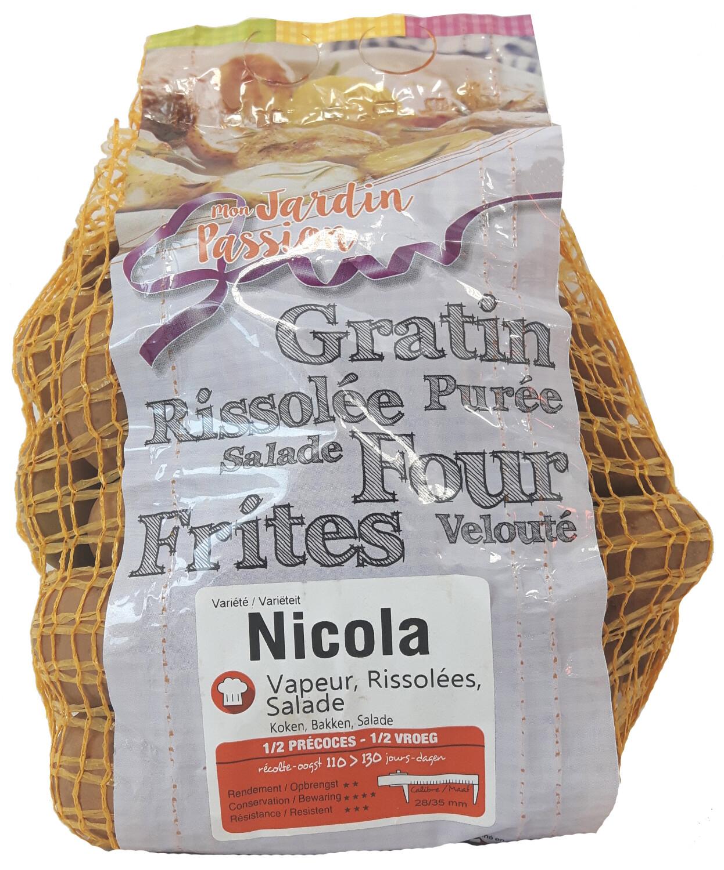 Pootgoed aardappelen Nicola France 15 kg