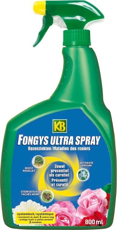 Rozenziektes bestrijden spray800 ml