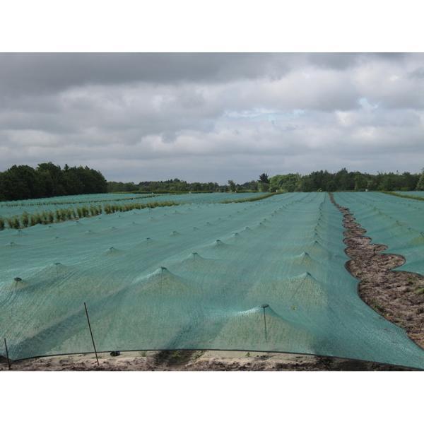 Schaduwnet voor zaaibedden 2 m x 2 m