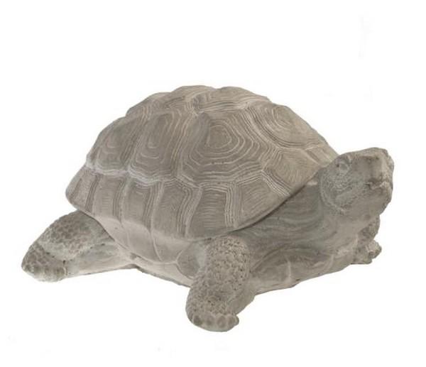 Schildpad in steen