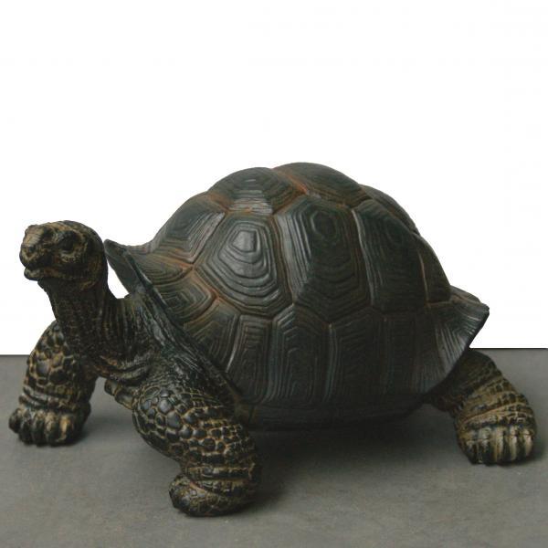 Reuzenschildpad miniatuur