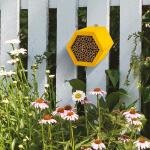 Bijenhuis Honeycomb Modular