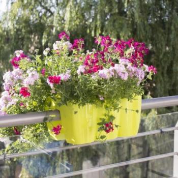 Bloembakken Voor Balkon.Relingbloembak Kopen Balkonrand Versieren Sierpotten En