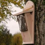 Nestkast voor boomkruiper - handgemaakt