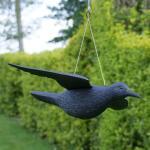 Duivenverjager vliegende kraai