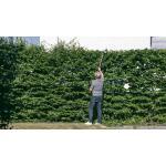 Heggenschaar op steel 40 V ACCU CRAMER - 280 cm