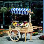 Houten marktwagen met luifel (blauwwit)