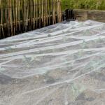 Insectennet biocontrol 3,3 x 10 m