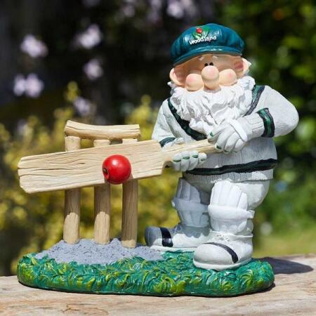 Kabouter Woody speelt cricket