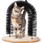 Kattenboog met kattenkruid