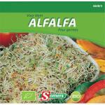 Kiemen Alfalfa/luzerne - BIO