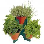 Kruidenpiramide 5 potten + zaden en grond
