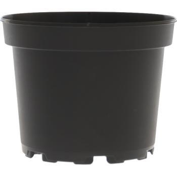 Potten Voor Planten.Grote Pot Kopen Voor Planten In Op Te Potten Kweekzakken En Potten