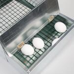 Legnest - legbak gegalvaniseerd voor 1 kip