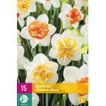 Narcissus Macaron Bloss - dubbelbloemig