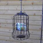 Pindakaaskooi voor kleine vogels