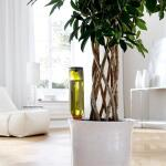 Plantbewateringssyteem terracotta