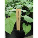 Plantenlabels hout - 10 cm