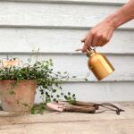 Plantensproeier verkoperd