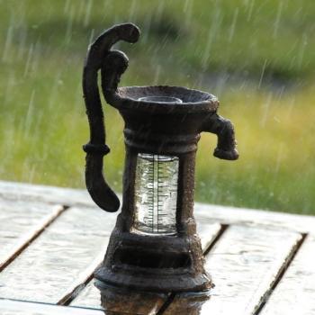 Betere Waterpomp regenwater - regenmeter in de vorm van een waterpomp FG-89