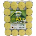 Theelichtjes Citronella  (40 stuks)
