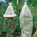 Tomatenvlies 0,8 x 5 m
