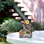 Uil op nest met sensor