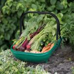 Verzamelmand - groente en fruit