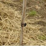 Vigne-fix 11 cm plantenbinder - 500 g