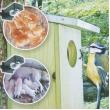 Vogel- en dierencamera
