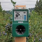 Vogelverjager meeuwen tot 6000 m²