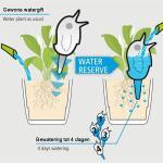 Gietsysteem potplanten vogeltje wit - 220 ml