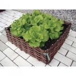 Wilgentenen plantenbed - 60 x 60 x 20 cm