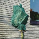 Rozen winterhoezen - groen (2 stuks)
