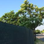 Zichtbreker - windbreker 25 x 2 m donkergroen