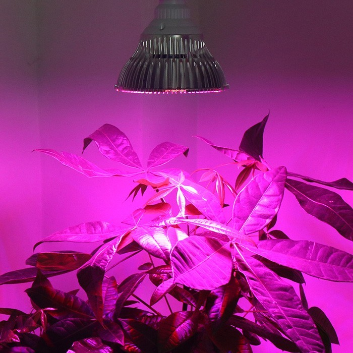 Supergrow LEDgroeilamp 15W