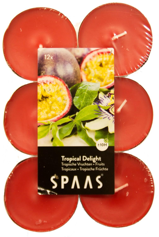 Theelicht maxi tropische vruchten
