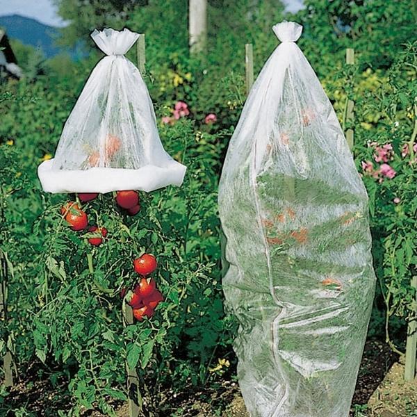 Tomatenvlies 08 x 5 m