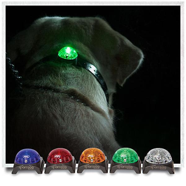 Veiligheidslamp voor hond en eigenaar