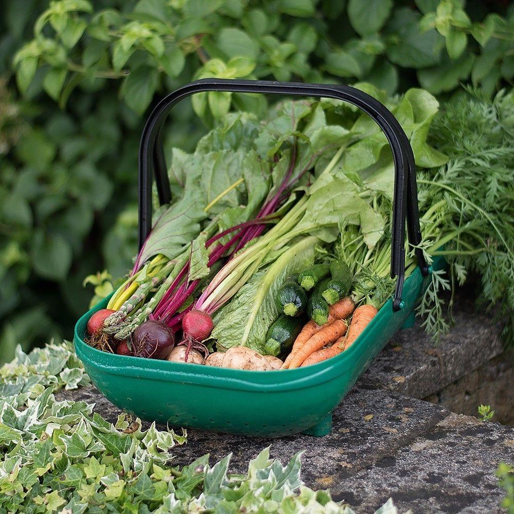 Verzamelmand groente en fruit