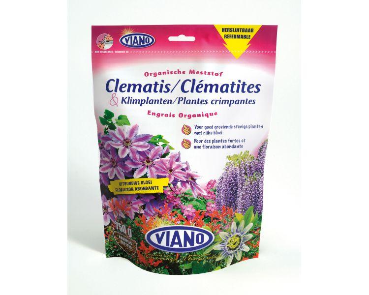 Viano Clematisklimplanten 750 g