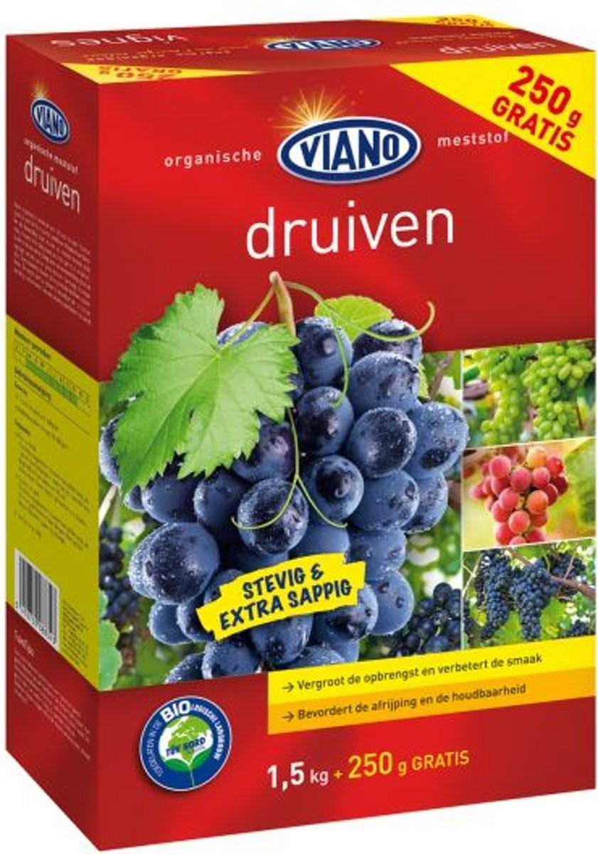 Viano Druiven 15 kg 250 g gratis