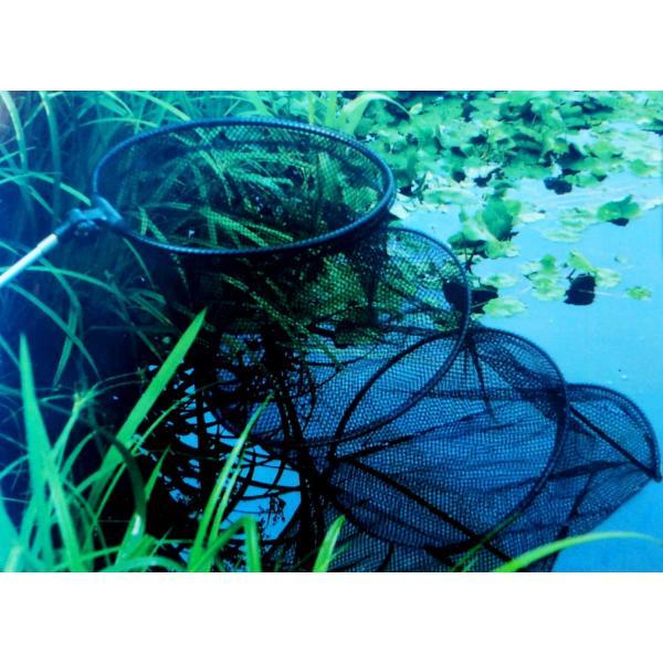 Visnet met aluminium stok 36 cm L 140 cm