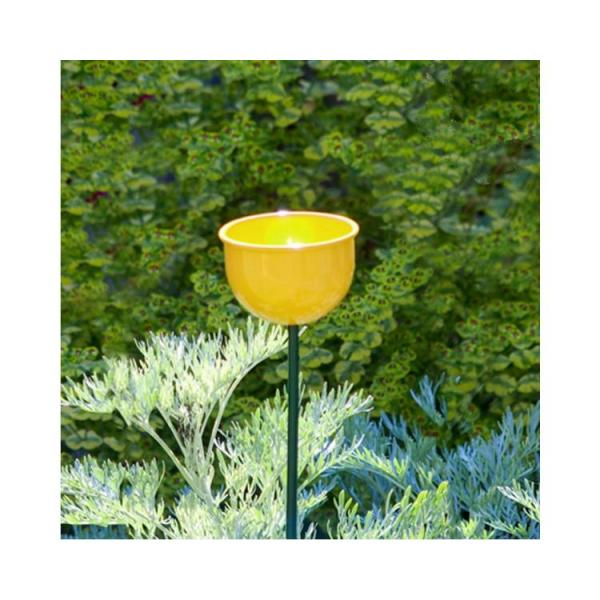 Voederbloem op stengel geel